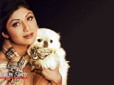 shilpa_hilton_with_yappertype_dog.jpg